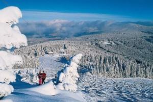 Bayerischer Wald Skifahren